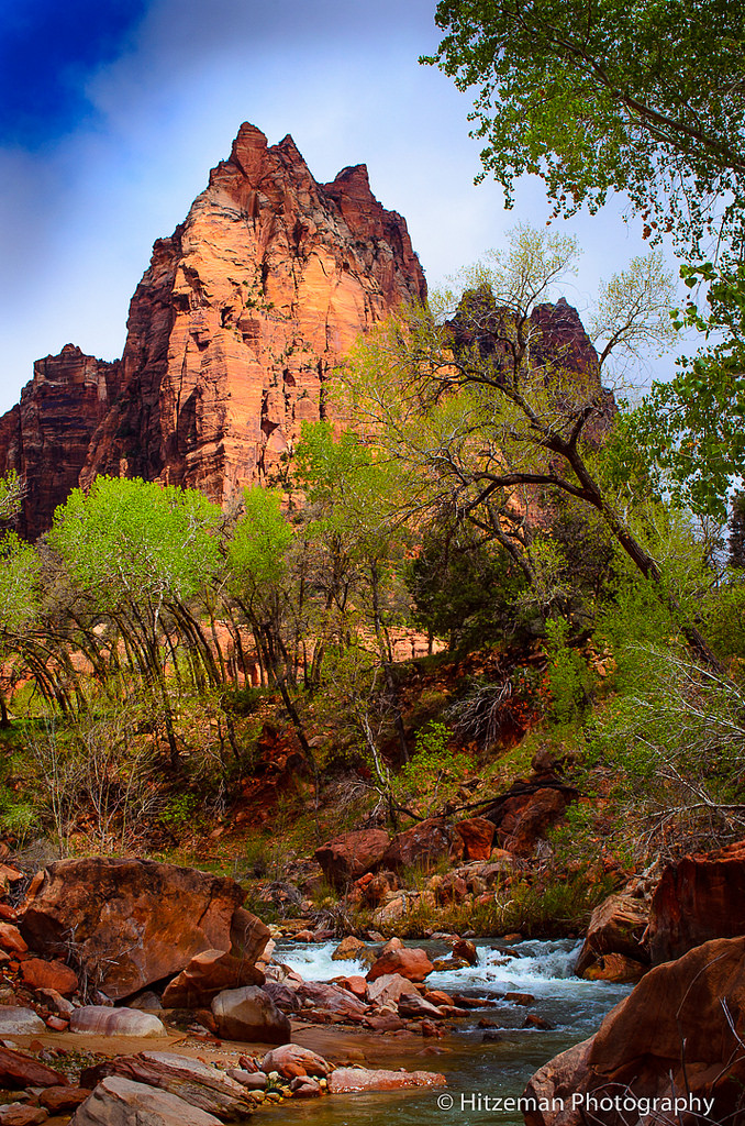 Canyon Spring