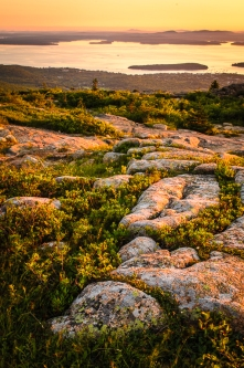 Sunrise from the top of Cadillac Mountain, Acadia National Park