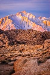 Sierra Pink Sunrise