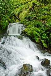 Sheppard's Dell Waterfall