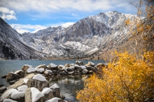 Convict Lake Fall Color