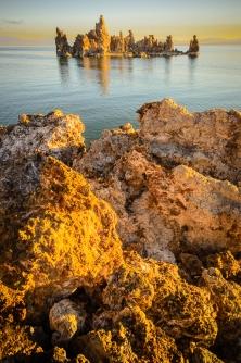 Mono Lake Gold