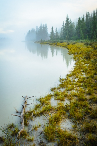 Beauty Creek Mist I