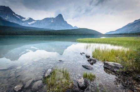 Waterfowl Lake III