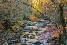 Little River Sunrise