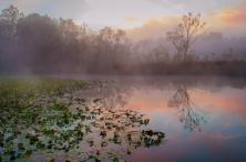 Dawn at Beaver Marsh