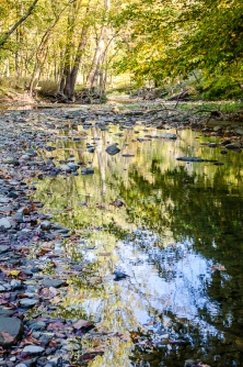 Afternoon Quiet on Chippewa Creek