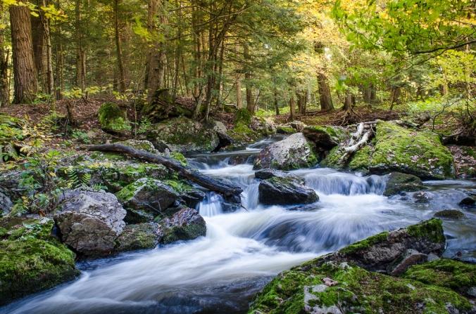 A Waterfall Glen